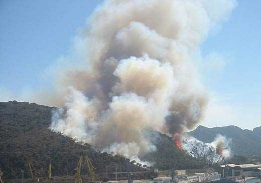 Una asociación reforestará mañana la ladera del monte Galeras quemada en 2003