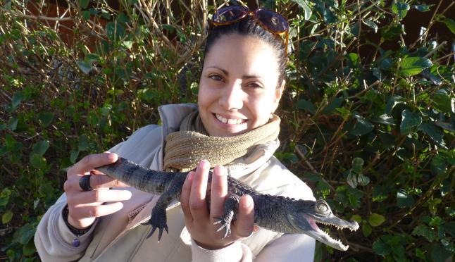 Entrega un caiman en Terra Natura